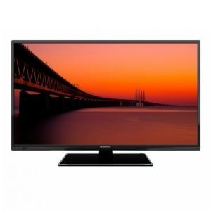 Champion Electronics Led-Tv 40 Dvb-T2 Hd