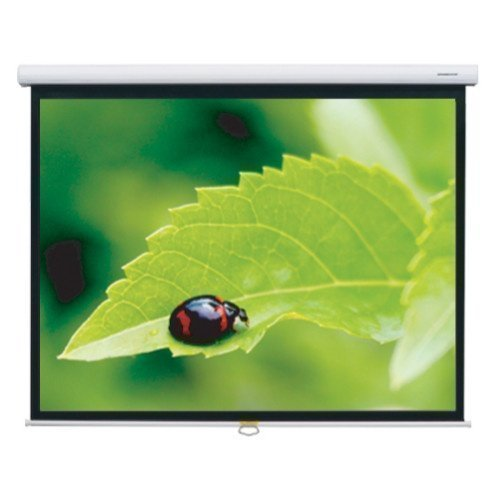 Grandview Fantasy 100'' Screen