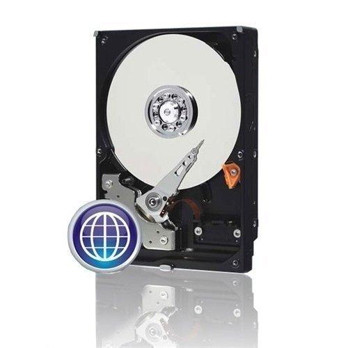 HDD-Intern-3.5 500GB Western Digital Caviar blue. Western Digital5000AAKX SATA-600 16MB.7200RPM