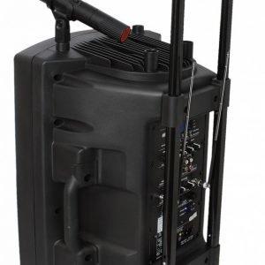 Ibiza Sound Kannettava Kaiutin 700 W + 2 Mikrofonia