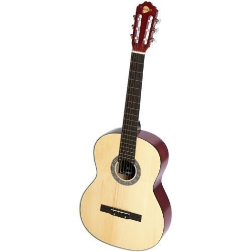 RockOn 2009 Acoustic guitar steel-stringed