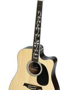 RockOn 2010 Acoustic guitar Western guitar