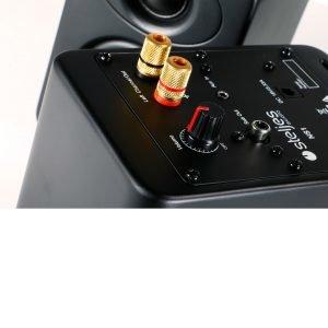 Steljes Audio Ns1 Aktiivikaiutinpari Musta