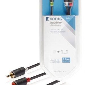 Stereo-audiokaapeli 3 5 mm:n urosliitin - 2 x RCA-urosliitin 1 00 m harmaa