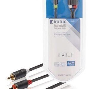 Stereo-audiokaapeli 3 5 mm:n urosliitin - 2 x RCA-urosliitin 2 00 m harmaa
