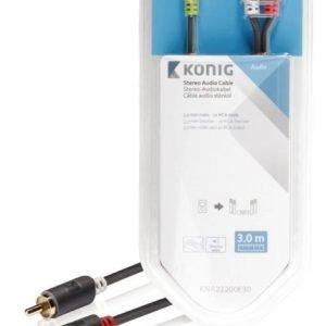 Stereo-audiokaapeli 3 5 mm:n urosliitin - 2 x RCA-urosliitin 3 00 m harmaa